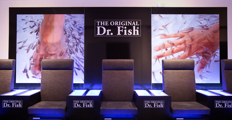 dr-fish-6