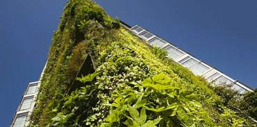 sustainable-building-practices rosenthal interiors